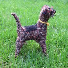 Border Terrier Knitted