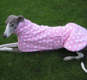 Greyhound Coat Pink