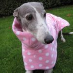 Greyhound Coat Pink