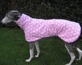 Pink Greyhound Coat Spotty