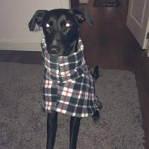 Lexie in coat