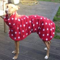 Sadie in coat