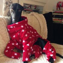 Red spotted pyjamas